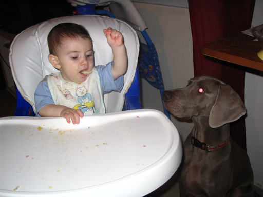 Omer plays with rene and the food